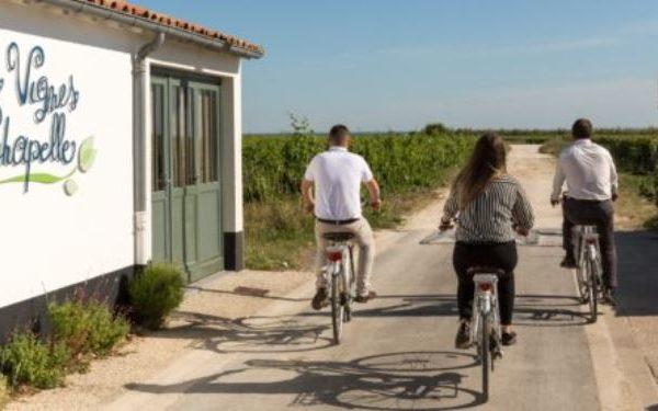 Île de Ré : le paradis des amateurs de vélo